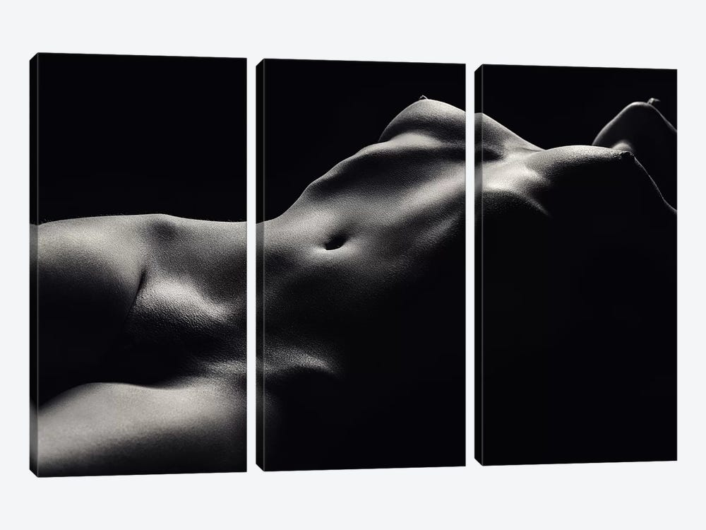 Nude Woman Bodyscape 47 3-piece Canvas Wall Art