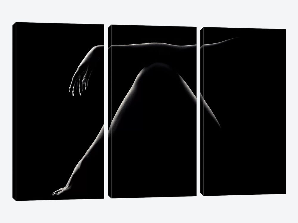 Nude Woman Bodyscape 51 by Johan Swanepoel 3-piece Canvas Art Print