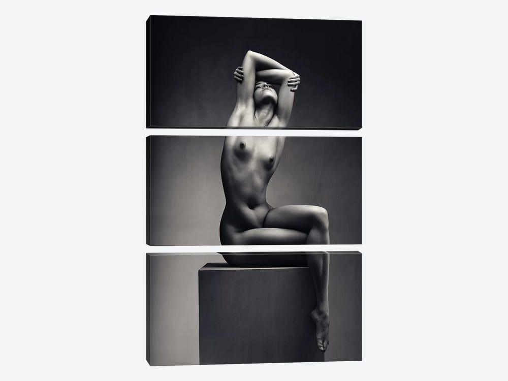 Nude Woman Fine Art 7 by Johan Swanepoel 3-piece Canvas Print