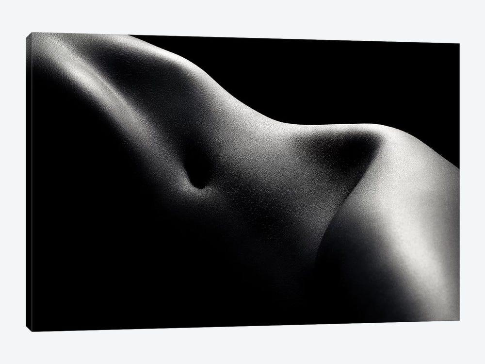 Nude Woman Bodyscape 52 by Johan Swanepoel 1-piece Canvas Art Print