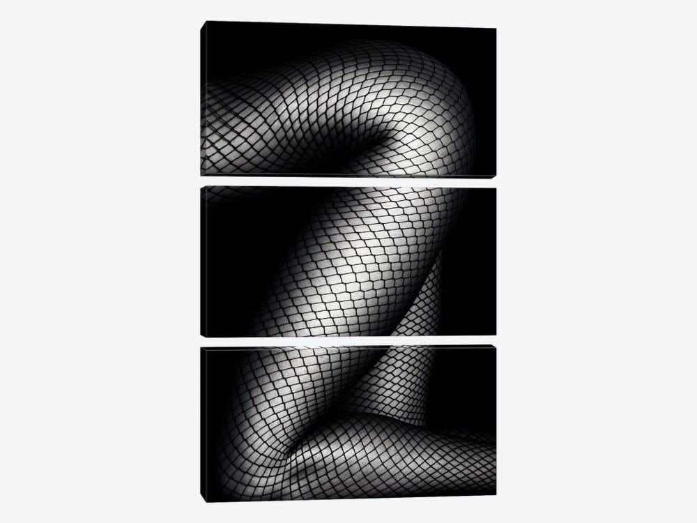 Legs In Fishnet Stockings 2 by Johan Swanepoel 3-piece Canvas Art