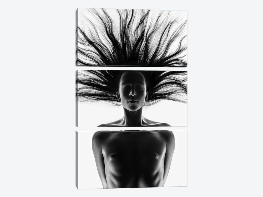 Nude Woman Fine Art 12 by Johan Swanepoel 3-piece Canvas Print