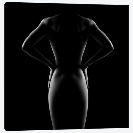 Nude Woman Bodyscape 53 Canvas Print #JSW148} by Johan Swanepoel Canvas Artwork