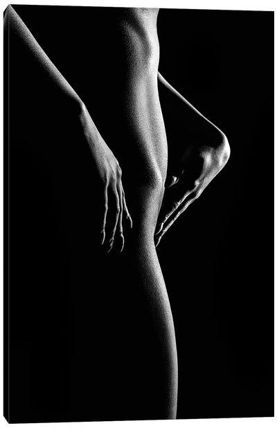 Nude Woman Bodyscape 55 Canvas Art Print