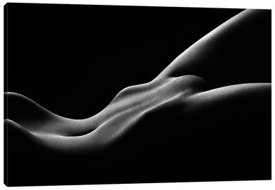 Nude Woman Bodyscape 59 Canvas Art Print
