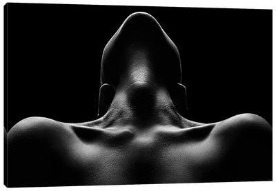 Nude woman bodyscape 63 Canvas Art Print