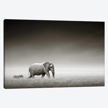 Elephant With Zebra Canvas Print #JSW18} by Johan Swanepoel Art Print