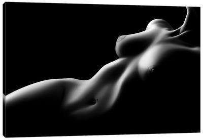 Nude Woman Bodyscape LXXV Canvas Art Print