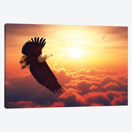 Fish Eagle Flying Above Clouds Canvas Print #JSW20} by Johan Swanepoel Canvas Wall Art