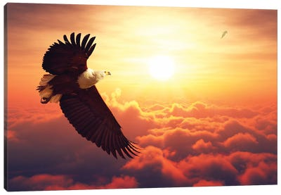 Fish Eagle Flying Above Clouds Canvas Art Print