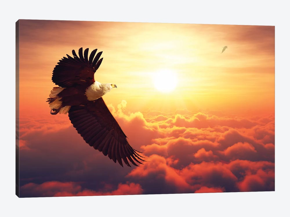 Fish Eagle Flying Above Clouds by Johan Swanepoel 1-piece Art Print