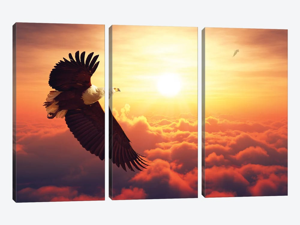 Fish Eagle Flying Above Clouds by Johan Swanepoel 3-piece Canvas Art Print
