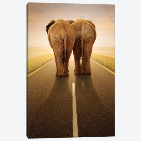 Going Away Together Canvas Print #JSW24} by Johan Swanepoel Canvas Print