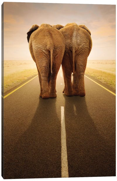 Going Away Together Canvas Art Print