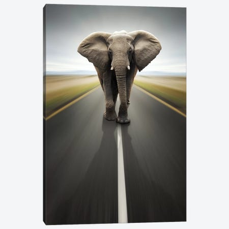 Heavy Duty Transport Canvas Print #JSW27} by Johan Swanepoel Canvas Print