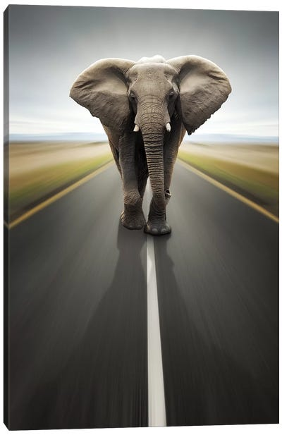 Heavy Duty Transport Canvas Art Print