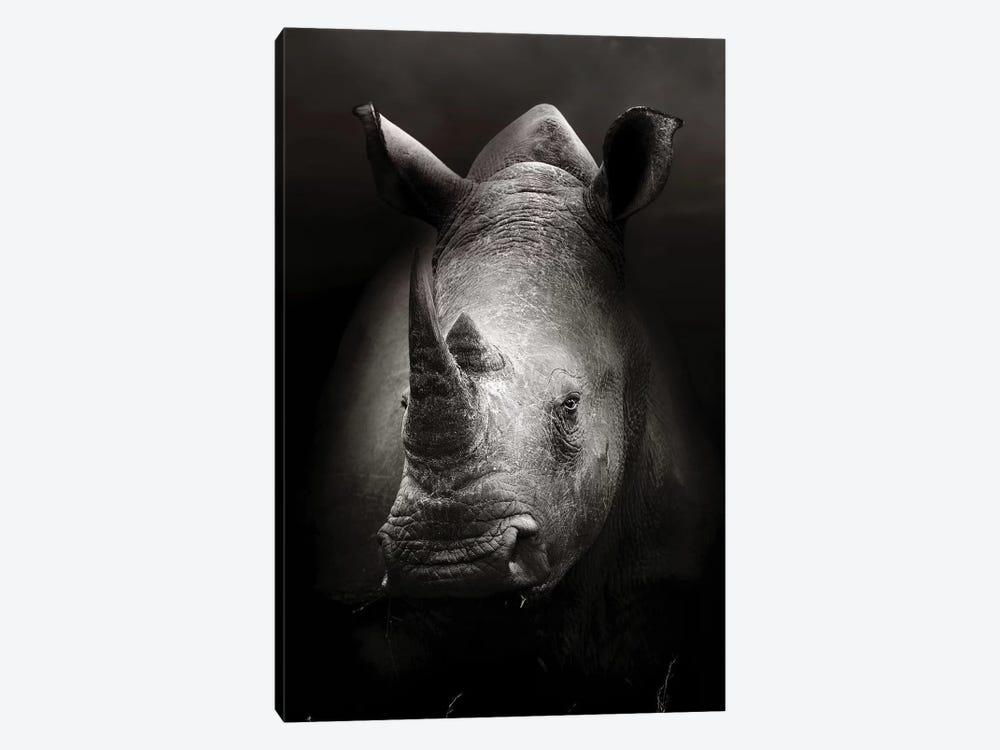 Rhinoceros Portrait by Johan Swanepoel 1-piece Canvas Art