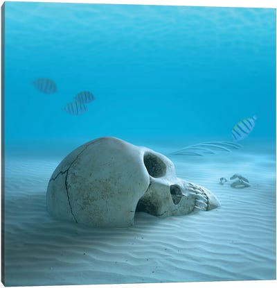Skull On Sandy Ocean Bottom With Small Fish Cleaning Some Bones Canvas Art Print