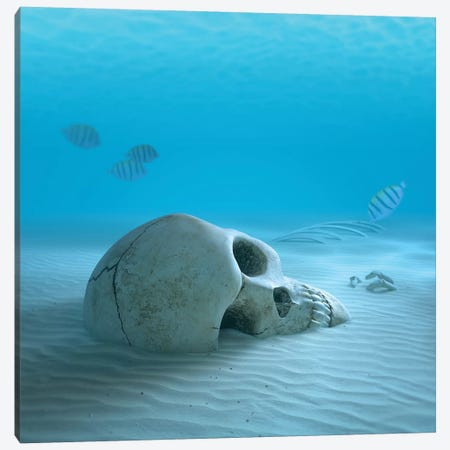 Skull On Sandy Ocean Bottom With Small Fish Cleaning Some Bones Canvas Print #JSW39} by Johan Swanepoel Art Print