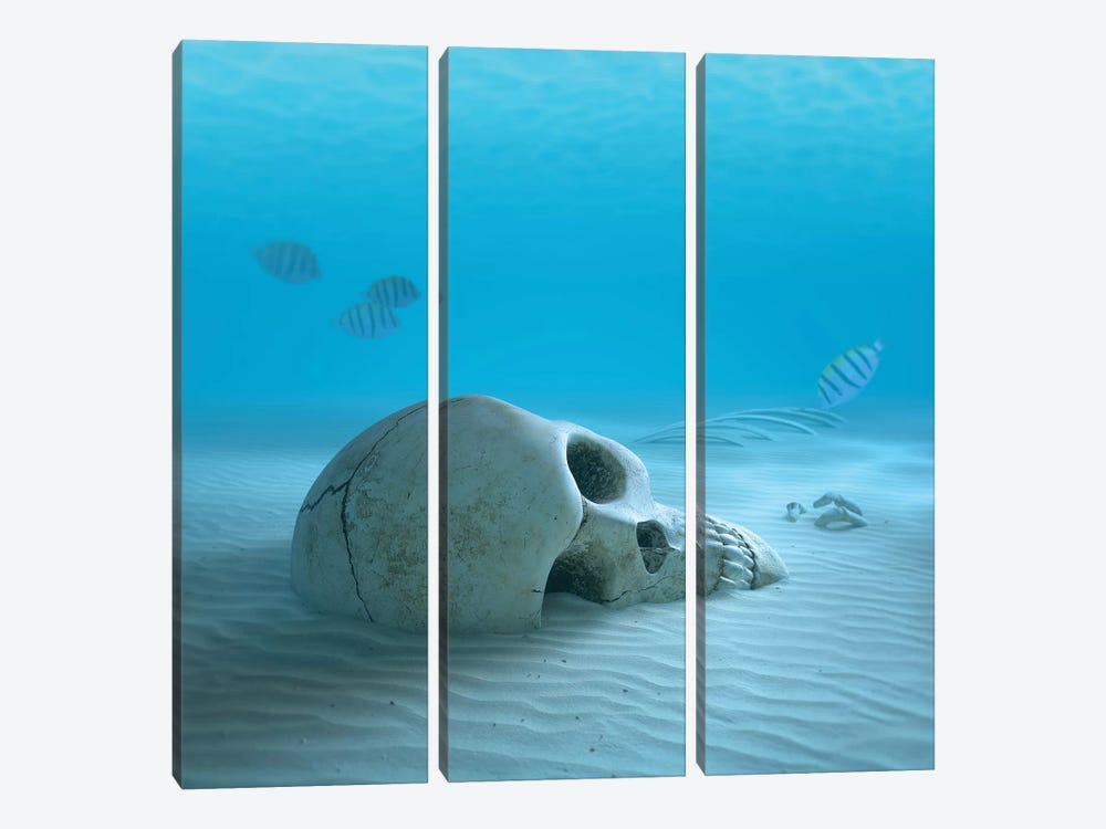 Skull On Sandy Ocean Bottom With Small Fish Cleaning Some Bones by Johan Swanepoel 3-piece Art Print