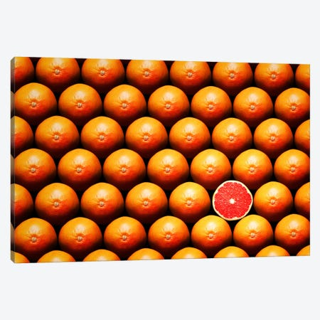 Sliced Grapefruit Between Group Canvas Print #JSW40} by Johan Swanepoel Canvas Art