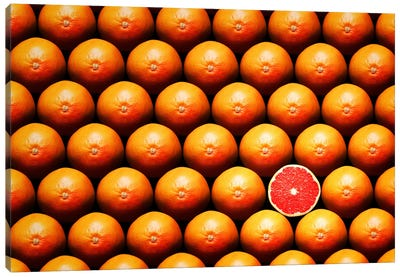 Sliced Grapefruit Between Group Canvas Art Print