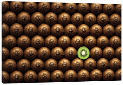 Sliced Kiwi Between Group Canvas Art Print