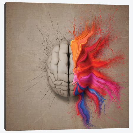 The Creative Brain Canvas Print #JSW42} by Johan Swanepoel Canvas Wall Art