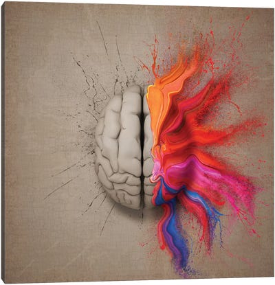 The Creative Brain Canvas Art Print