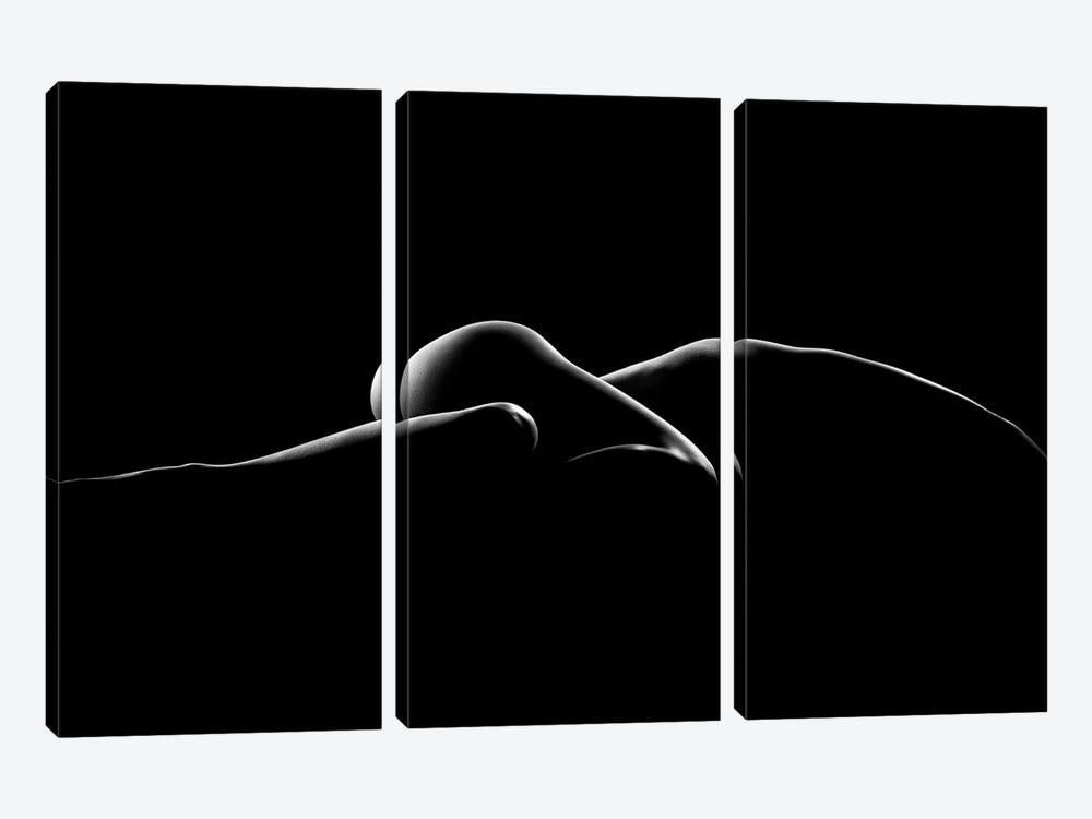 Nude Woman Bodyscape VIII by Johan Swanepoel 3-piece Art Print