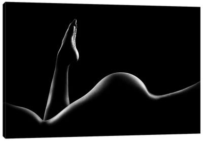 Nude Woman Bodyscape XIV Canvas Art Print