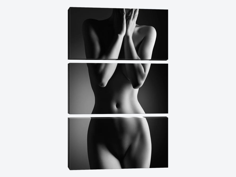 Nude Woman Bodyscape XXIV 3-piece Canvas Print