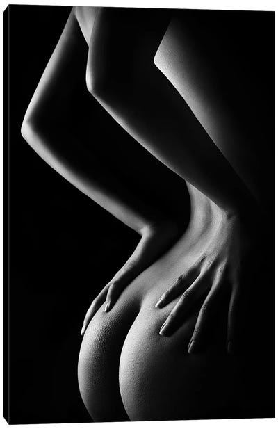 Nude Woman Bodyscape XXIX-B Canvas Art Print