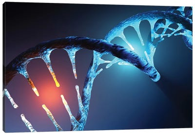 DNA Strand Canvas Art Print