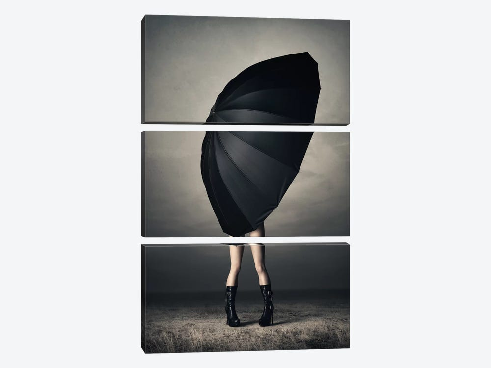 Woman With Huge Umbrella by Johan Swanepoel 3-piece Canvas Print