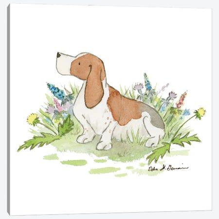 Barney The Basset Hound Canvas Print #JSY101} by Jasper And Ruby Canvas Print
