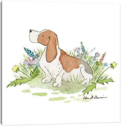 Barney The Basset Hound Canvas Art Print