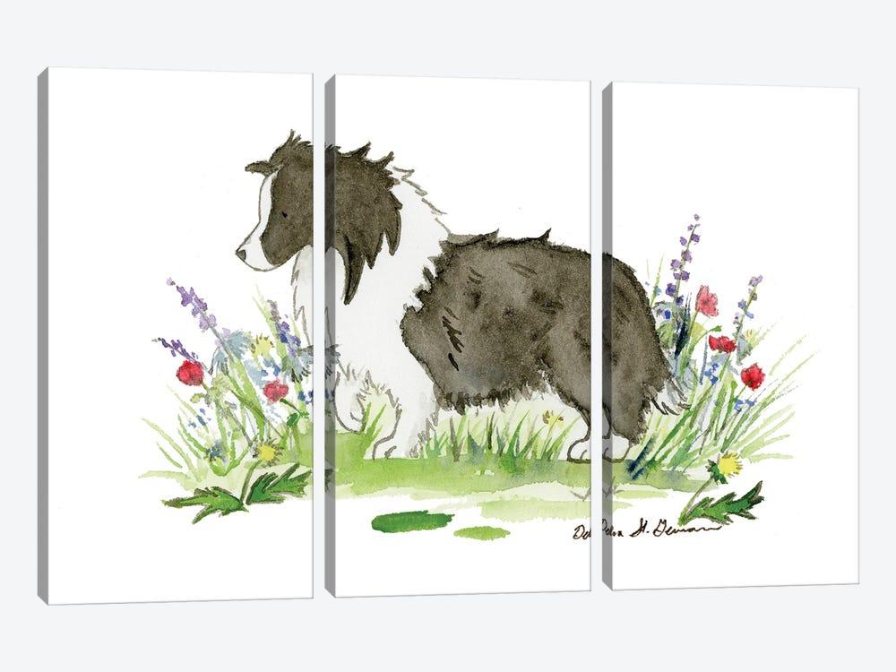 Raven The Bi Black Shetland Sheepdog by Jasper And Ruby 3-piece Canvas Art Print
