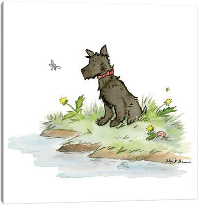 Nigel The Scottish Terrier Canvas Art Print