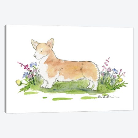 Baxter The Welsh Corgi Canvas Print #JSY114} by Jasper And Ruby Canvas Art Print