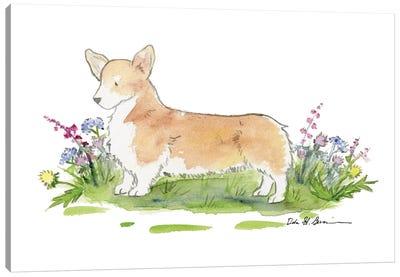 Baxter The Welsh Corgi Canvas Art Print