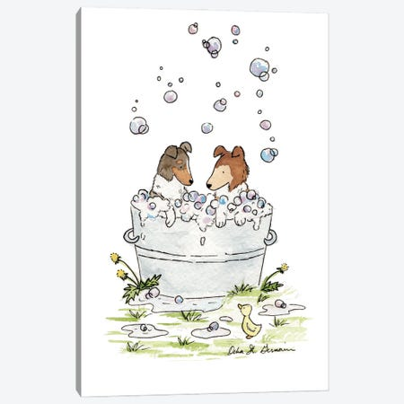 Bath Time for Collies Canvas Print #JSY11} by Jasper And Ruby Canvas Art Print