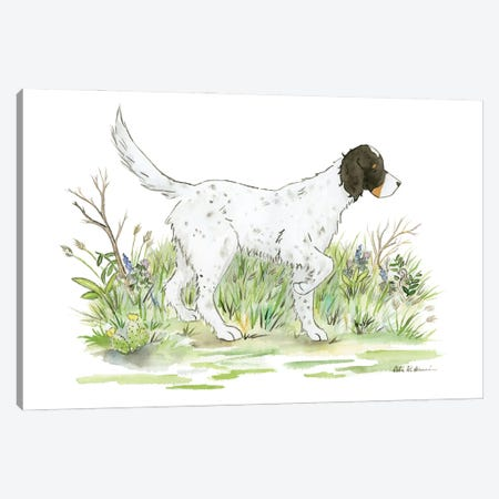 Gus The English Setter Canvas Print #JSY123} by Jasper And Ruby Art Print