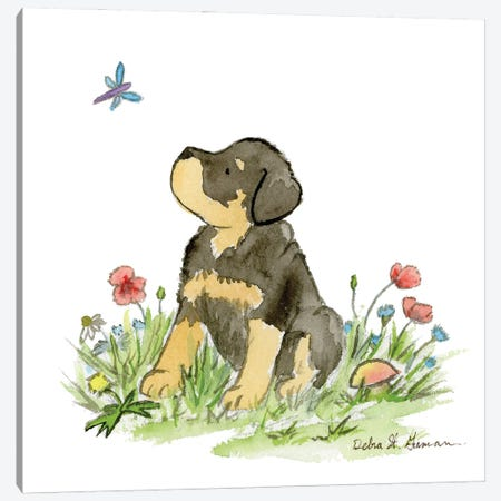 Miles The Rottweiler Puppy Canvas Print #JSY124} by Jasper And Ruby Canvas Wall Art