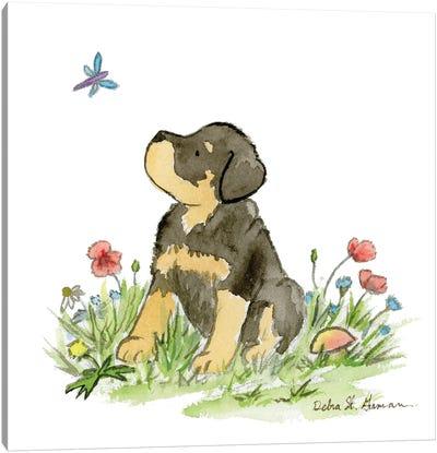Miles The Rottweiler Puppy Canvas Art Print
