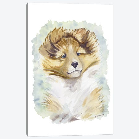 Minori The Sable Shetland Sheepdog Puppy Canvas Print #JSY125} by Jasper And Ruby Canvas Artwork