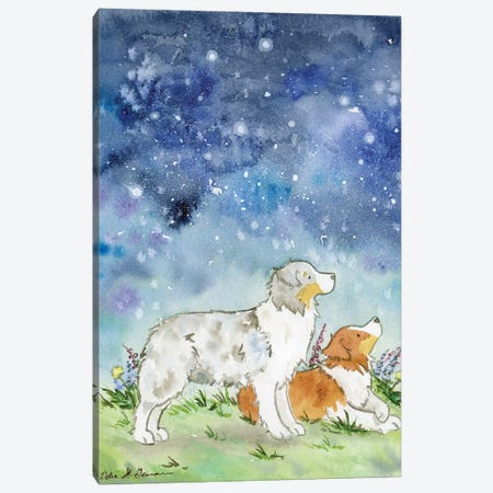 Australian Shepherds On A Starry Night Canvas Print #JSY126} by Jasper And Ruby Canvas Artwork