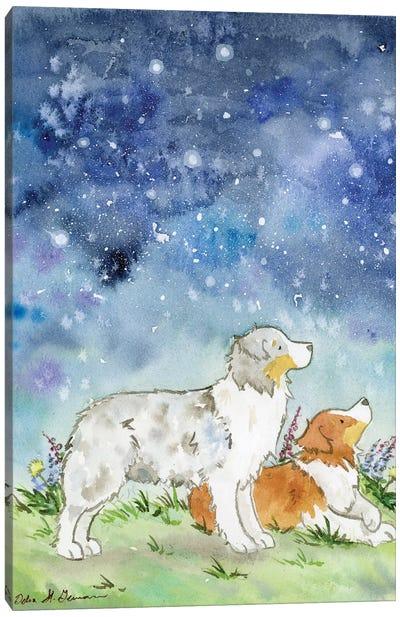Australian Shepherds On A Starry Night Canvas Art Print