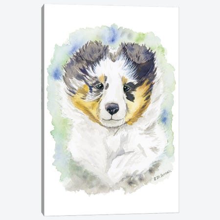 Winter The Blue Merle Shetland Sheepdog Puppy Canvas Print #JSY127} by Jasper And Ruby Canvas Wall Art