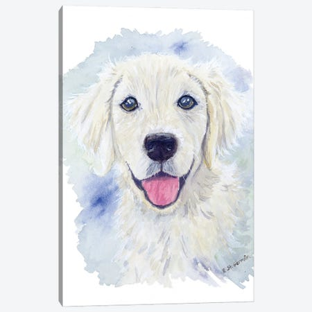 Charlie The Golden Retriever Puppy Canvas Print #JSY130} by Jasper And Ruby Canvas Art